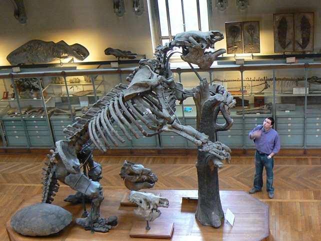 prehistoric16 Невероятные монстры прошлого, обитавшие на Земле