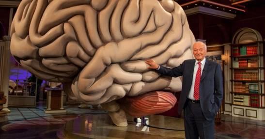 6 самых важных открытий в области мозга за последний год