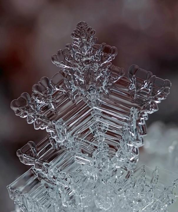 snejinkimakro 19 Снежинки. Фотограф Андрей Осокин