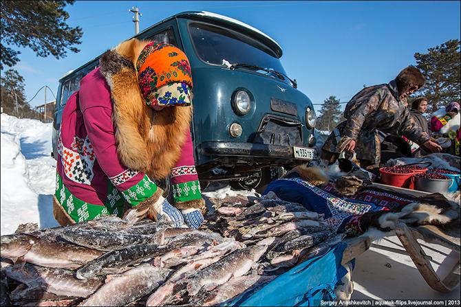 День рыболова, охотника и оленевода в Югре