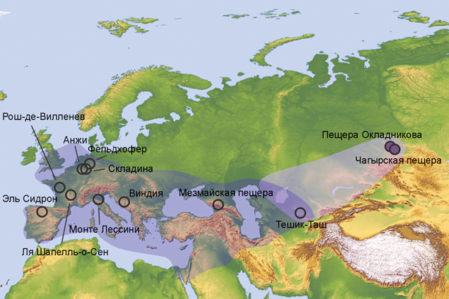 Уже доказано, что неандертальцы жили не только в Европе, но и в Западной Сибири.