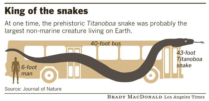 Титанобоа - Змея Монстр