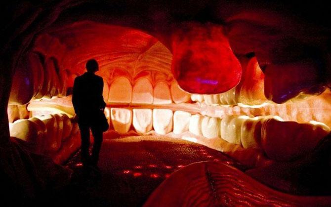 6 самых шокирующих анатомических музеев мира