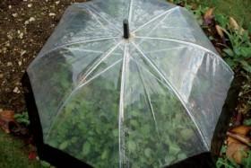 Что можно сделать из старого зонтика своими руками фото