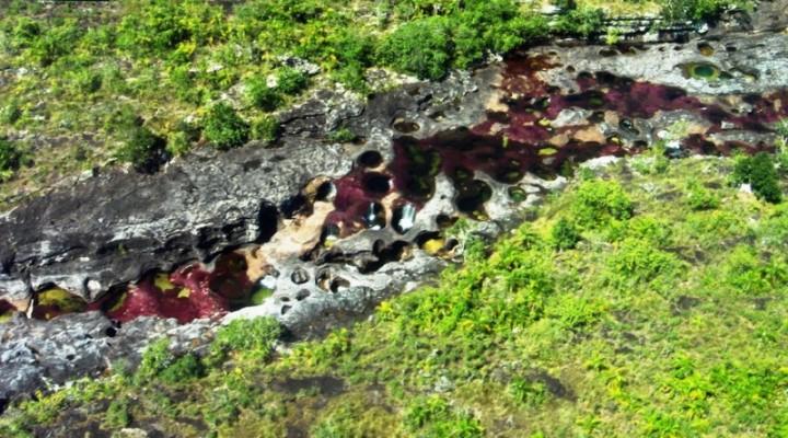 images18 800x444  Каньо Кристалес – самая красивая река на Земле