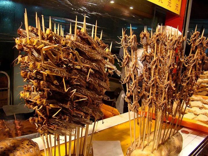 edible03 Фотогид по съедобным насекомым
