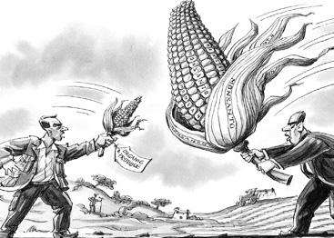 Производство продуктов питания с ГМО сравнимо с использованием биологического оружия