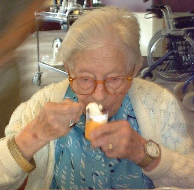 Хендрикье ван Андел-Шиппер родилась в позапрошлом веке. И благодаря своей крови прожила 115 лет.