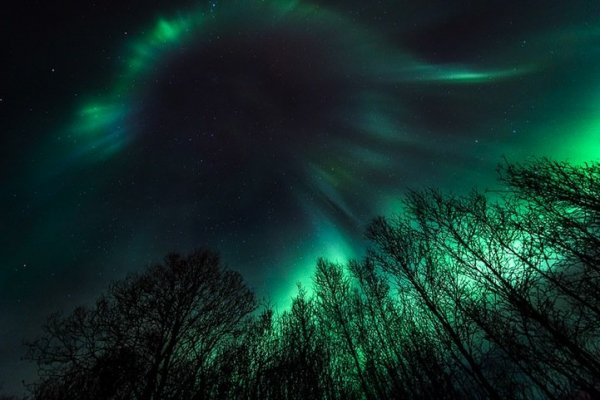 Звёздное небо, озарённое полярным сиянием (13 фото)