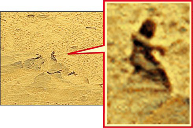 Знаменитая марсианка из кратера Гусева