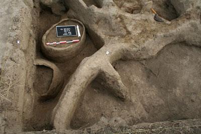 Большие остродонные сосуды. В них археологи обнаружили остатки зерна.