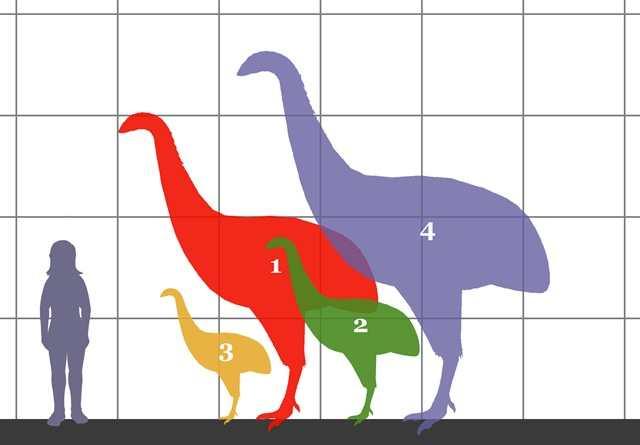 prehistoric10 Невероятные монстры прошлого, обитавшие на Земле