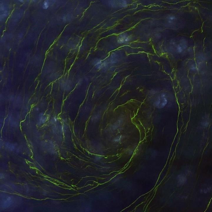 satellite02 Самые интересные снимки со спутника 2013