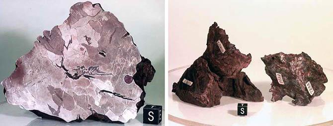 10 самых крупных метеоритов, упавших на Землю
